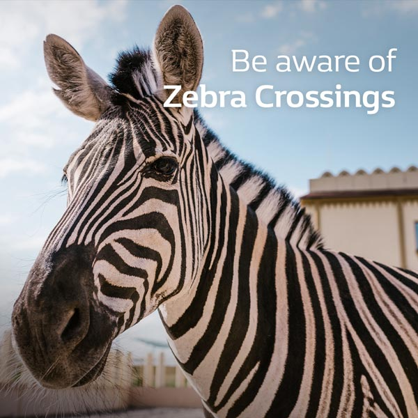 Be aware of zebra crossings
